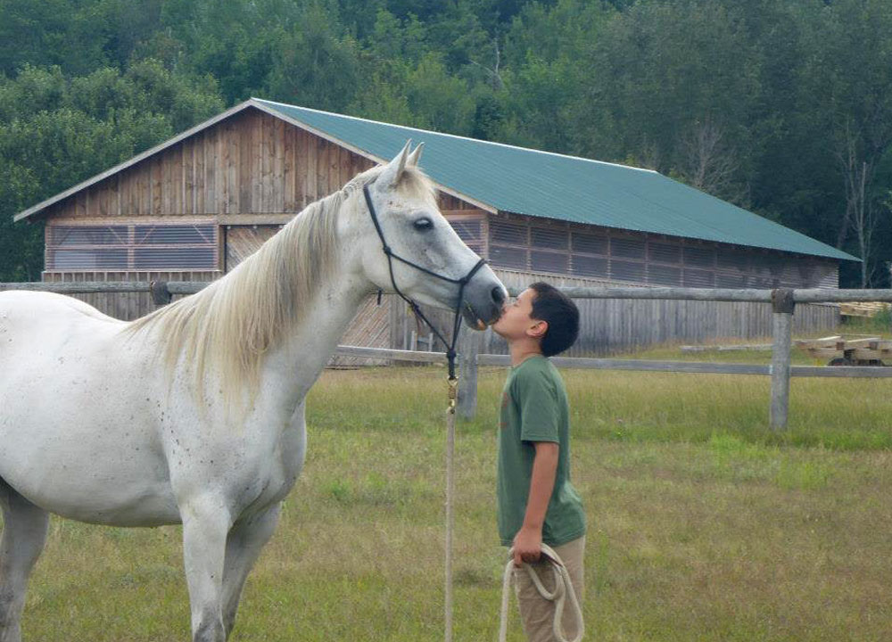 Magical Horses Summer Camp for Kids & Teens 夏令营